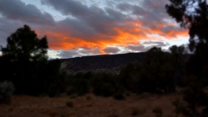 Utah 2012 488 699